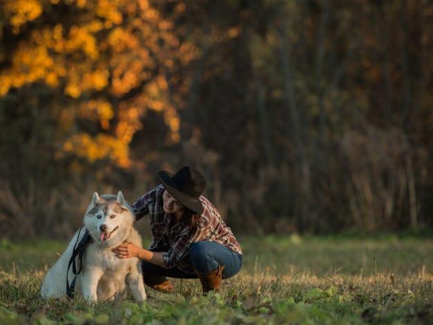 Mulher fazendo carinho no Husky Siberiano