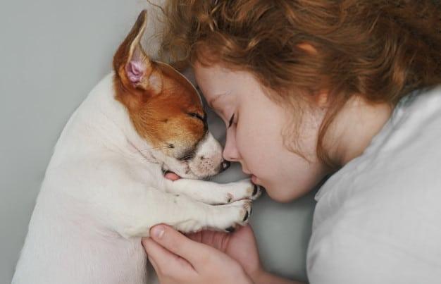 cachorro criança