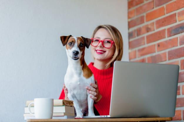 Saiba o significado dos comportamentos dos cães