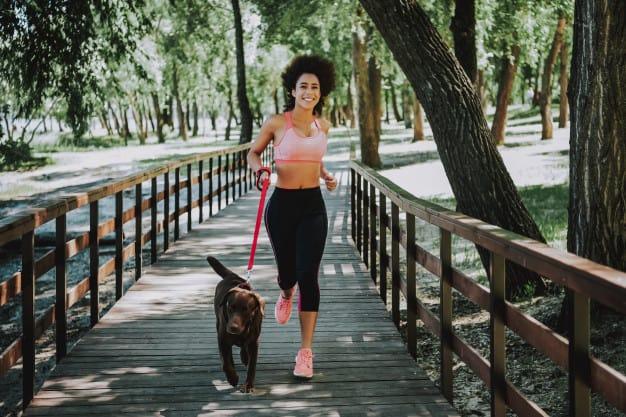 Como definir horário e tempo ideal para o passeio do seu cão