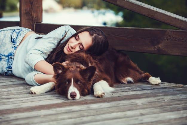 Porque alguns cães gostam de colo e outros não?