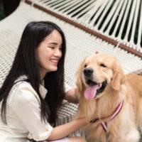 alegre-mulher-asiatica-brincando-com-seu-cachorro-golden-retriever-no-jardim-em-casa_10585-451