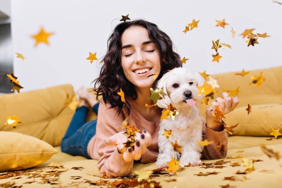Cachorro no tapete com sua tutora e estrelas douradas - Crédito da Imagem: Freepik