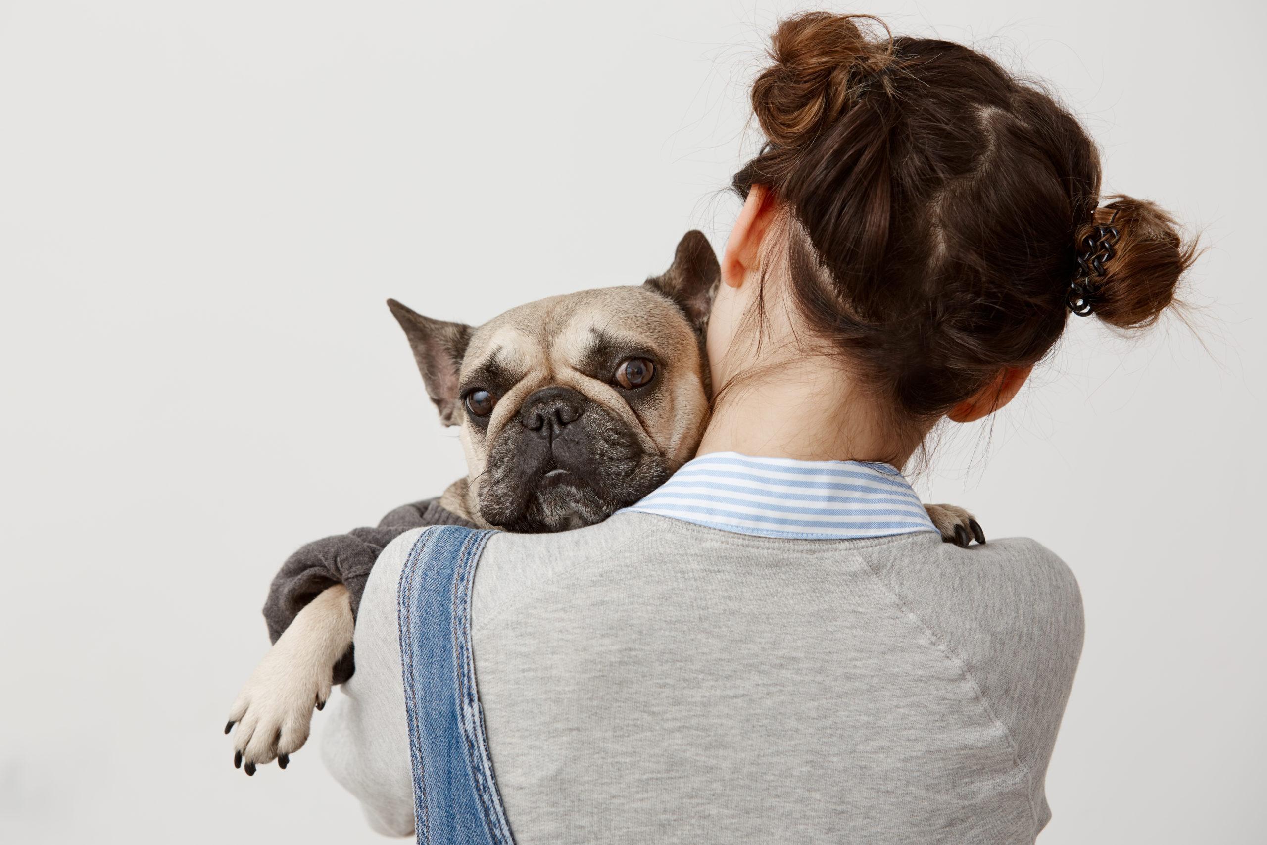 Como criar um cachorro independente em casa
